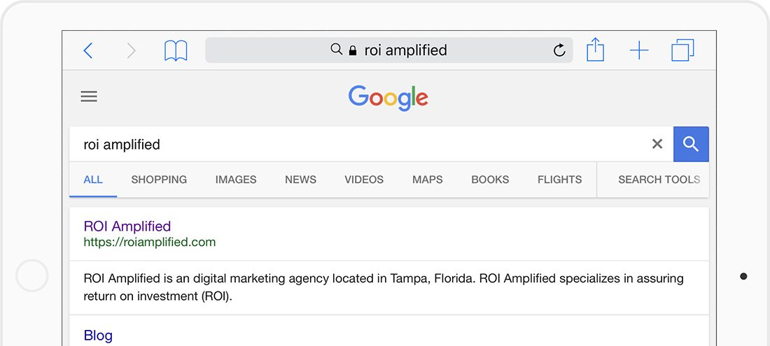 Google search for ROI Amplified