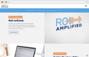 Desktop display of ROI Amplified's website