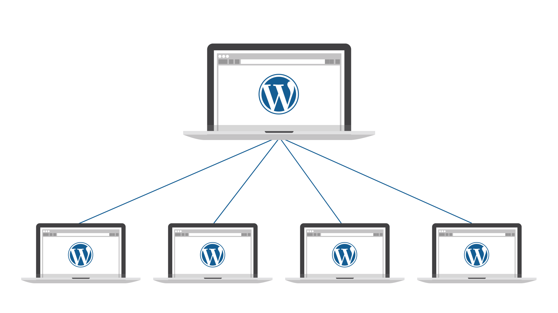 Visualization of a Wordpress Multisite Setup