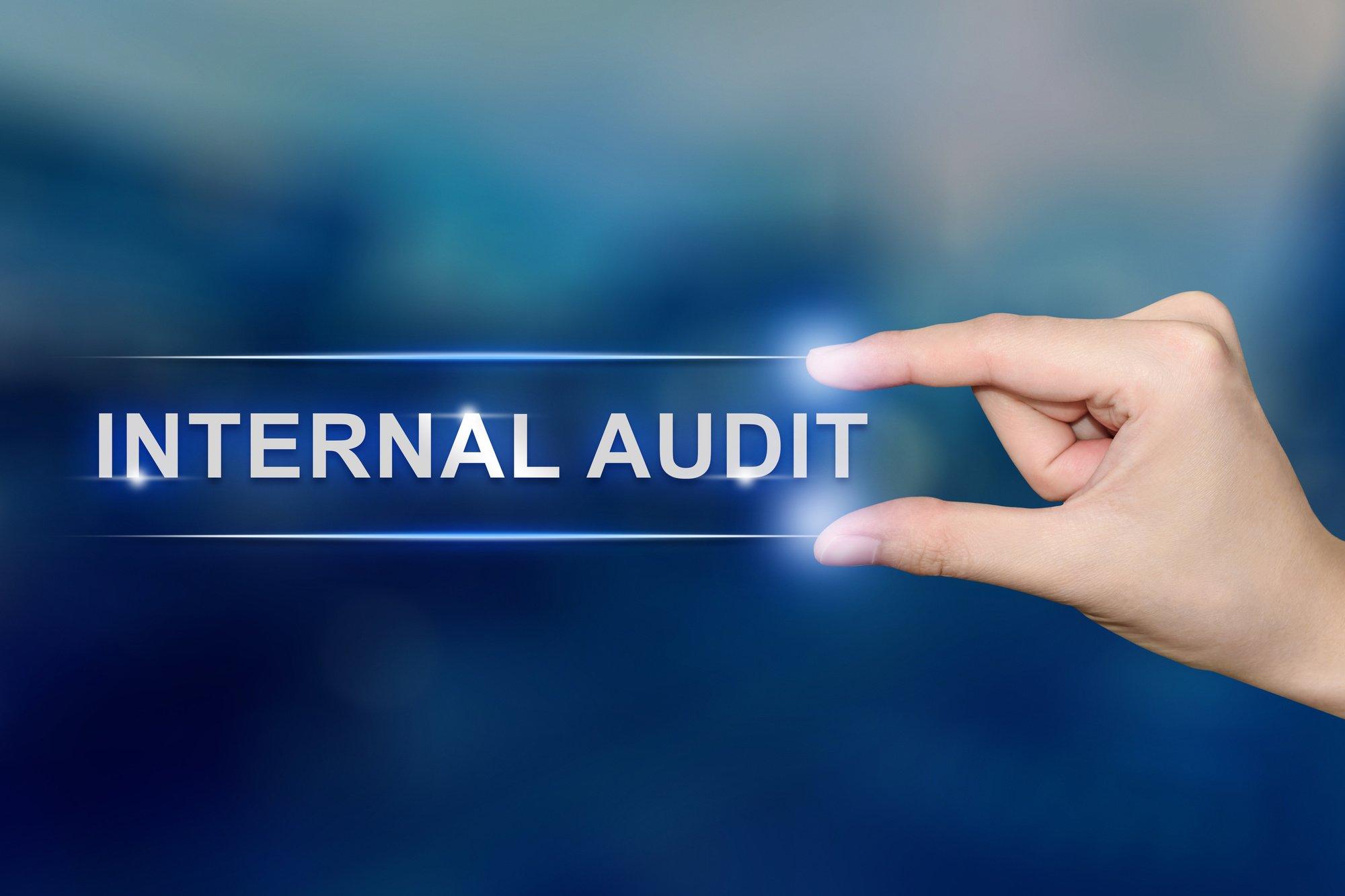 internet audit text